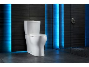 Niagara's Stealth Phantom Toilet
